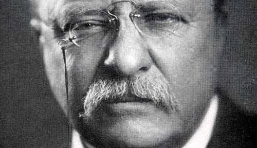 Three Roosevelts
